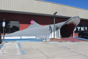 Shark Mouth Building Entry